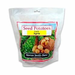 Seed Potatoes Agria 6 Pack