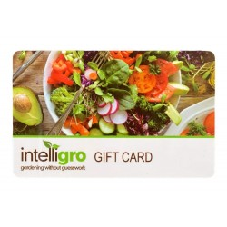 Intelligro Gift Card $100