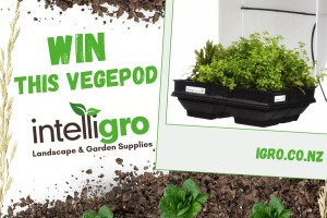WIN This VegePod