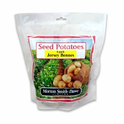 Seed Potatoes Jersey Benne 6 Pack