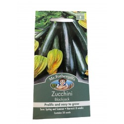 Seeds Zucchini Blackjack