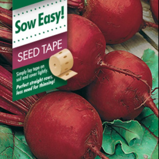 Seeds Beetroot Boltardy