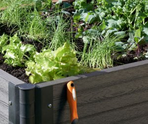 Planter Boxes & Raised Gardens
