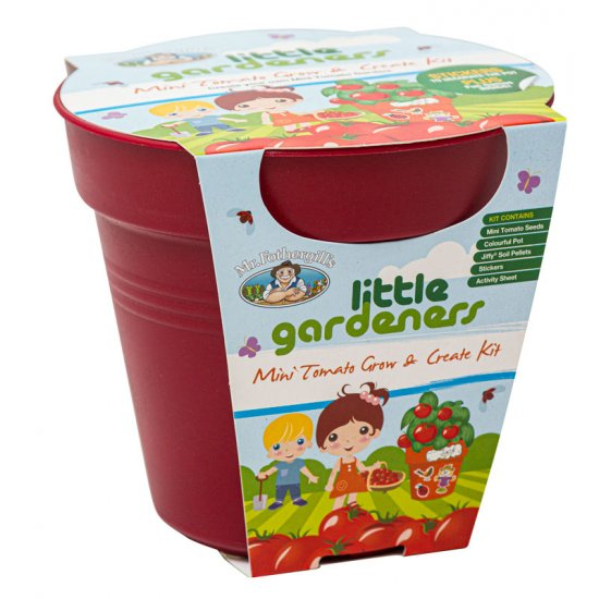 Grow & Create Tomato Kit